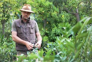 Laurent Gannac, Agrumiculteur, producteur citron de menton
